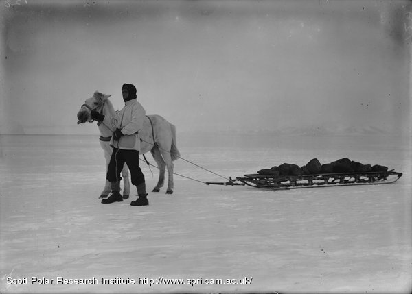 Mather and a sledge of ballast. Jan. 14th 1911.