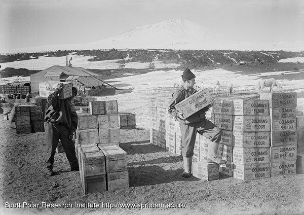 Piling stores near hut. Colman flour. Jan. 23rd 1911.