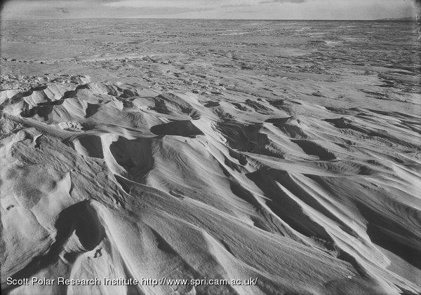 Sastrugi on Barne Glacier. Feb. 21st 1911