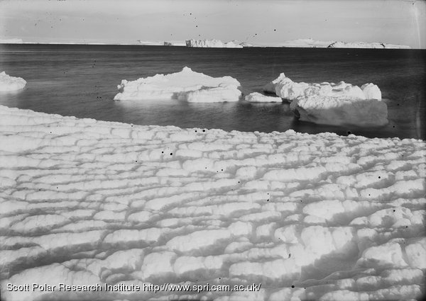 Weathered ice after blizzard at Cape Evans, looking to castle Rock. March 8th 1911