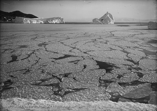 Pancake ice forming into floe off Cape Evans. March 15th 1911