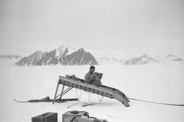 W.E. Hampton reading the 'Motor' on upturned hard runner sledge, Neny Fjord